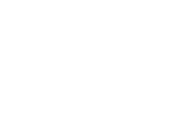 Prodream THE ONE