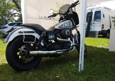 Motor's Lake International Ternate VA 2017-04